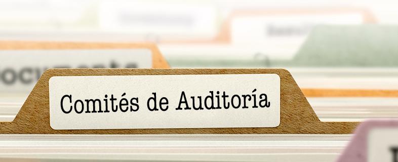 Los actuales deberes y responsabilidades de los Comités de Auditoría para las Entidades de Interés Público (EIP)