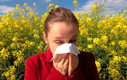 Intolerancias, alergias y seguridad alimentaria