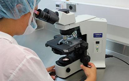 Novedades en hematología clínica y terapéutica