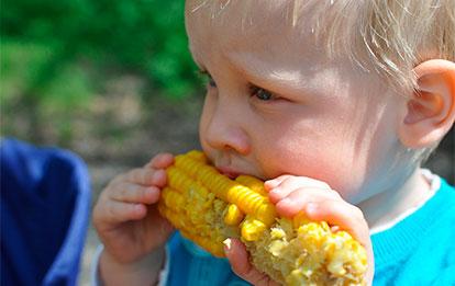 Obesidad infantil. Nutrición inteligente para su prevención y tratamiento