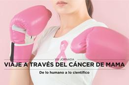 VIII Jornada Viaje a través del cáncer de mama