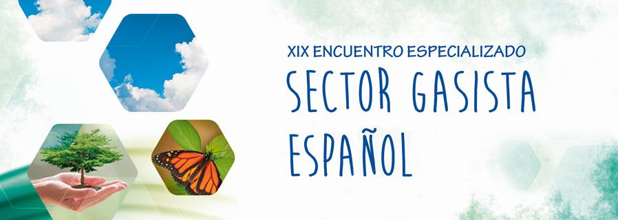 Sector Gasista Español. 19º Encuentro