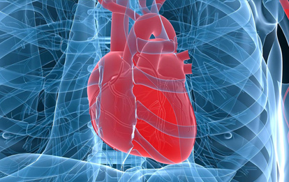 Experto Universitario en Enfermería Cardiovascular