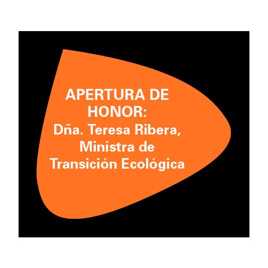 XIII Encuentro Sector Eléctrico