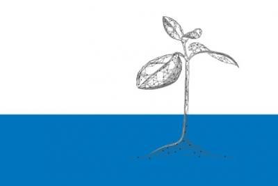 Especial 35 aniversario Expansión. Sostenibilidad y digitalización