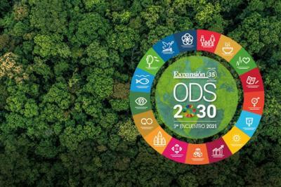 El liderazgo empresarial en la agenda de los ODS2030. Los ODS en la agenda del CEO